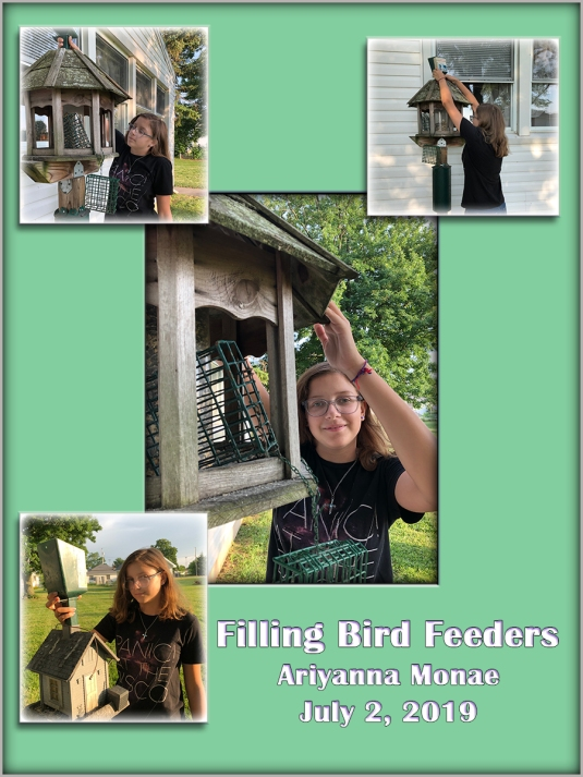 Filling Bird Feeders 2019